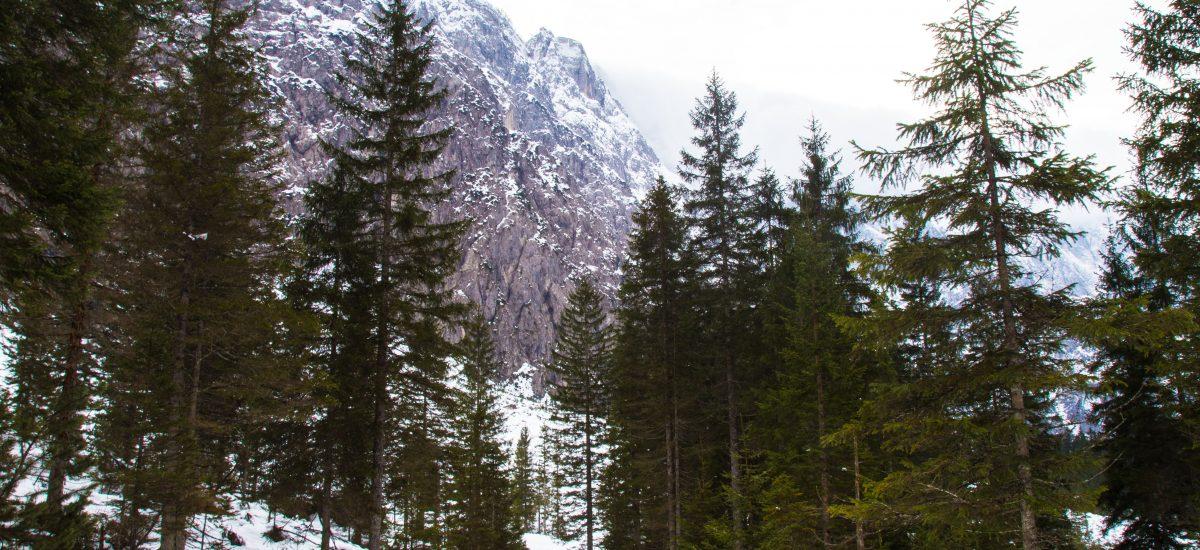 Trekking in the Planica valley to the Tamar Alpine Hut