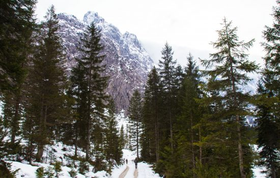 Trekking in the Planica valley to the Tamar Alpine Hut