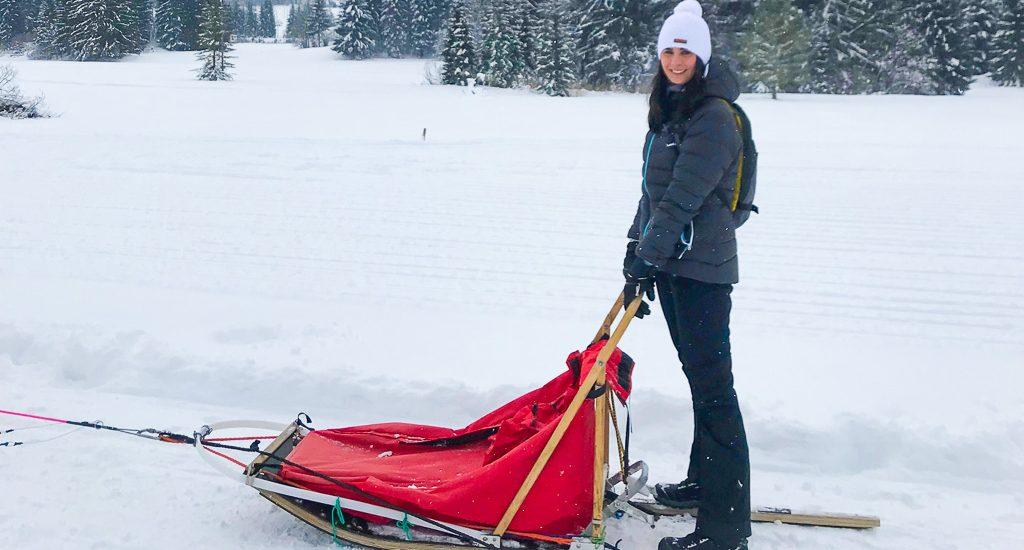 Sleddog in Friuli. Prova anche tu l'emozione di correre sulla neve con le slitte trainate dai cani