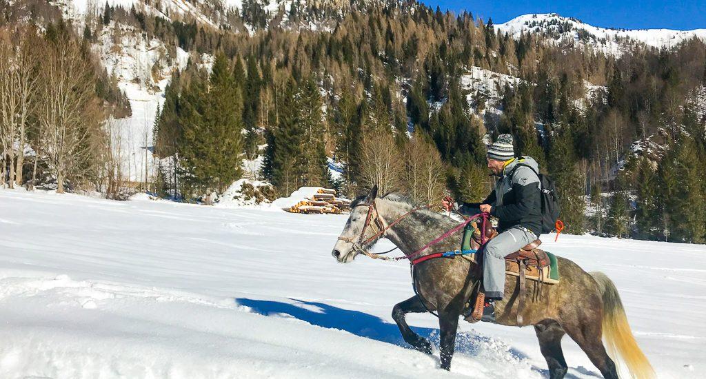 Escursioni a cavallo nella neve in Friuli. Ecco dove poterle fare.