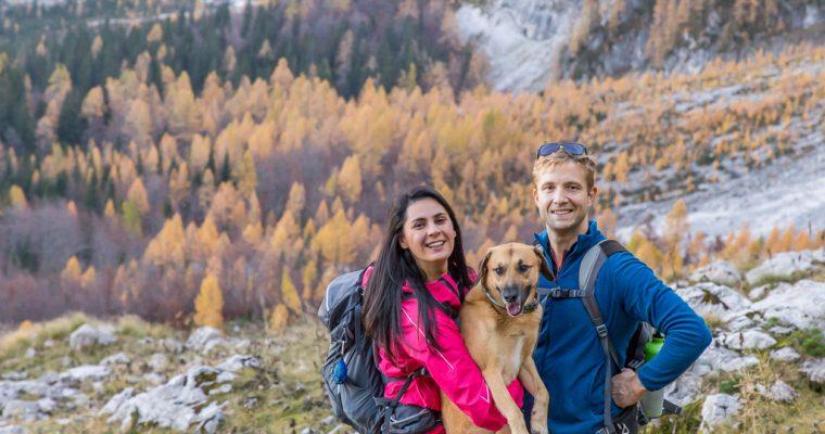 Sentiero dell'Alpe Vecchia in autunno partendo dal lago superiore di Fusine | Tarvisio