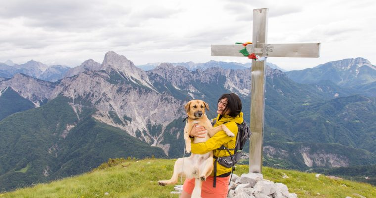 Trekking bellissimo sul monte Tersadia da forcella Lius | Ligosullo