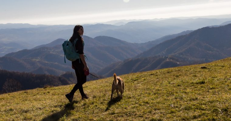 Trekking ad anello sul Kolovrat dal rifugio Solarie |  Valli del Natisone