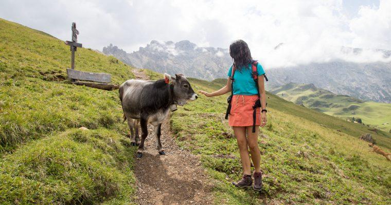 TREKKING SULL' ALPE DI SIUSI: FOTO E CONSIGLI