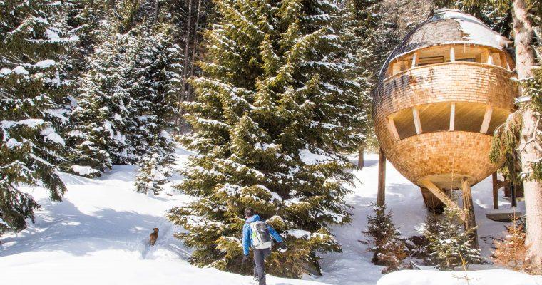 Dormire in casette sugli alberi, glamour camping e Luxury chalet in Friuli? Ecco tutti gli indirizzi.