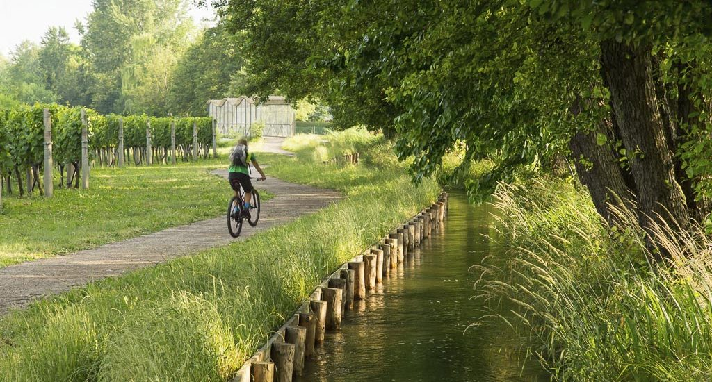 The most beautiful cycle path for families in Friuli: La ciclabile delle Rogge | From Zompitta to Molin Nuovo