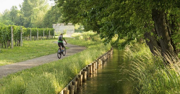 La più bella ciclabile per famiglie del Friuli: La ciclabile delle Rogge | Da Zompitta di Reana del Rojale a Molin Nuovo